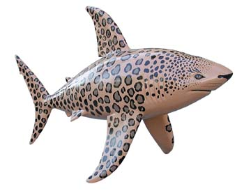 The Shark statue called LeopardShark