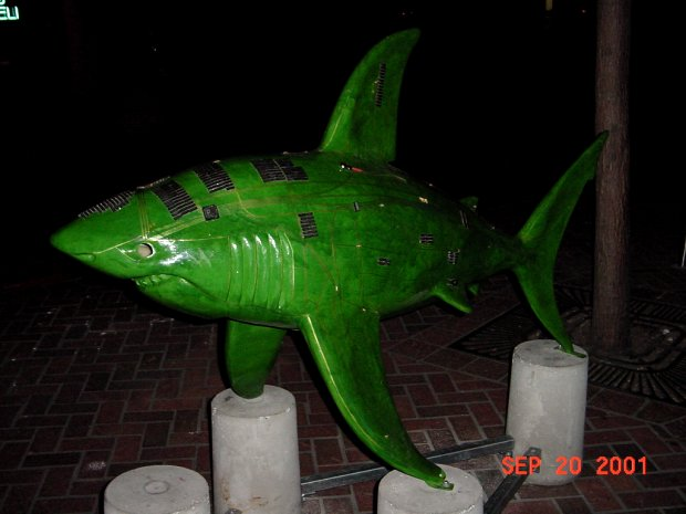 The Shark statue called SqualiformWebcam1